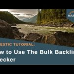 Majestic Tutorial: How to Use The Bulk Backlink Checker