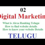 Digital Marketing Class 02|What is Alexa Ranking Telugu|How to find website details-vlrtraining