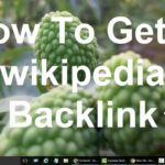 How to get a Wikipedia backlink- SEO Ranking Store free Linkbuilding tips