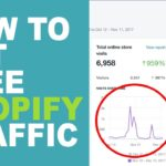 The Shopify Feature No One's Using For Free Traffic?!