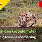 Google Indexierung beschleunigen: 6 Hacks für deine Webseite & Backlinks