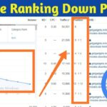 Why Website Ranking Down After GOOGLE CORE UPDATE [ MAY 2020 ]
