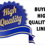 Buy PBN Links How To Buy High Qaulity PBN Links - For Your Site Quick Rankings