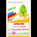 Backlink from SUPER PBN