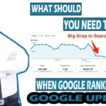 What Should You Need Do When Your Google Ranking Dropped
