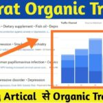 How to Get More Organic Traffic With the Google Trends