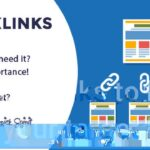 SEO backlinks strategy & services to rank higher - An Overview