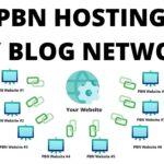 PBN Hosting Easy Blog Networks