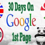 Seo Services Company High Quality Backlinks 30 Days 1st Page Guaranteed Ranking Service Affordable