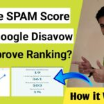 What is SPAM score and how to remove bad backlinks from Website?