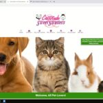Search Engine Optimization SEO with Easy Busy Pets websites