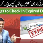 5 Things you must check before Buying an Expired Domain   SEO Urdu/Hindi 2021